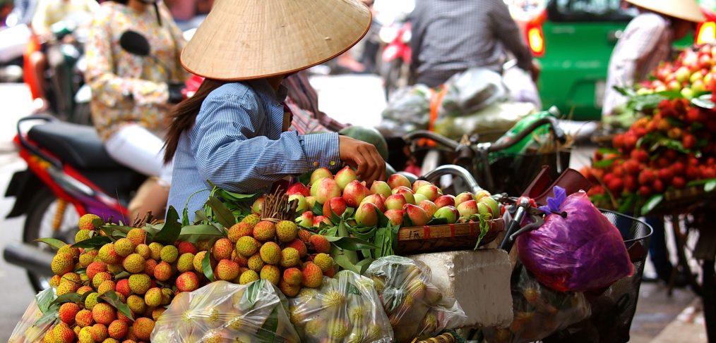 vivre-vietnam