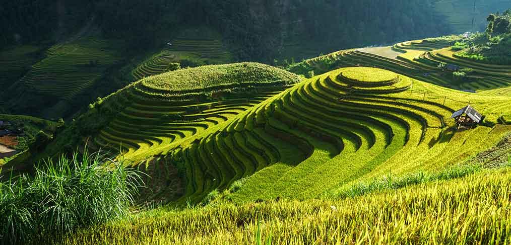 climat-vietnam-side-image